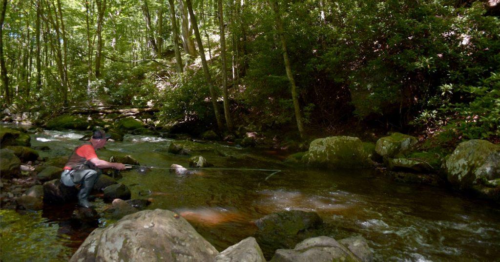 Fishing in Smyth County VA at Big Tumbling Creek