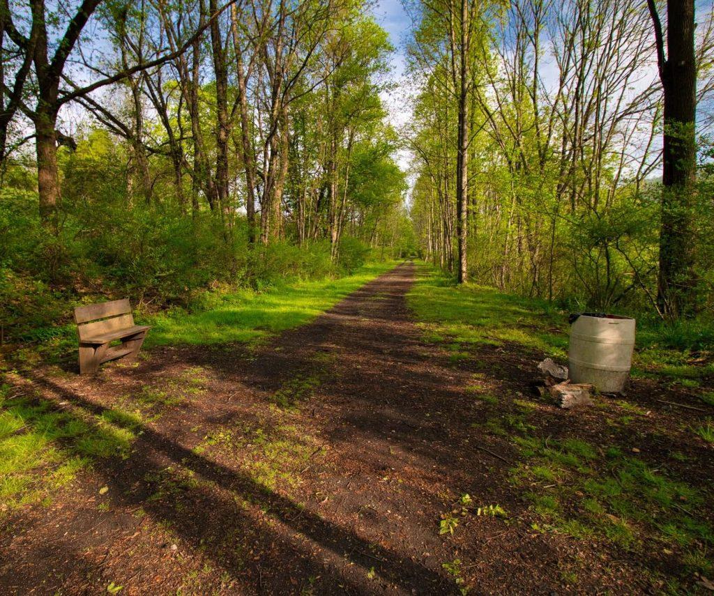 The Salt Trail in Smyth County VA