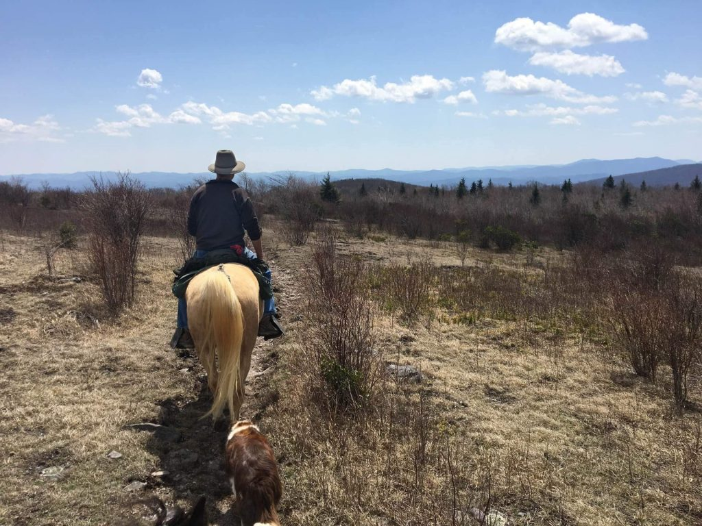 Horseback Riding on the Virginia Highlands Horse Trail in Smyth County VA