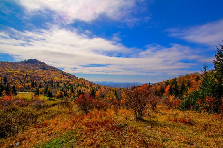 Grayson Highlands State Park in Smyth County VA Fall Hikes